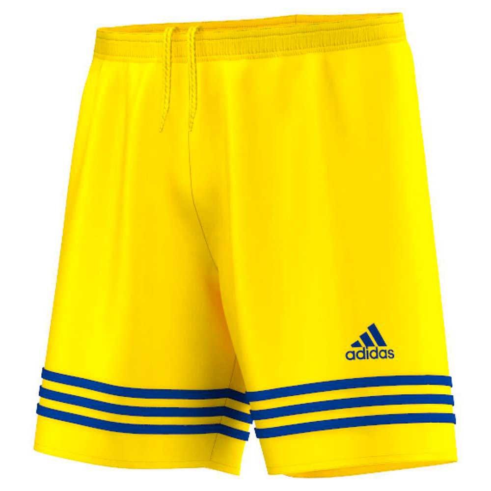 Óptima Almeja Tender  adidas Entrada 14 Short Yellow buy and offers on Goalinn