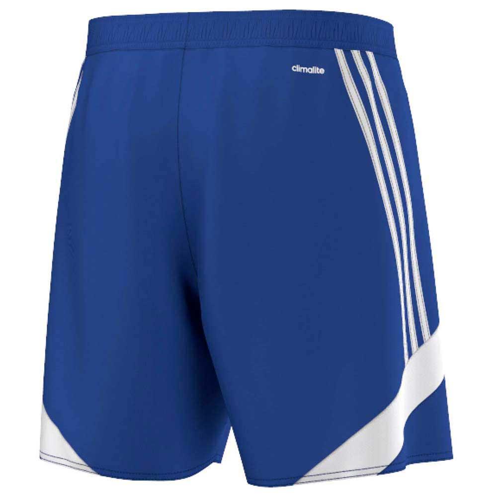 Nova 14 Shorts