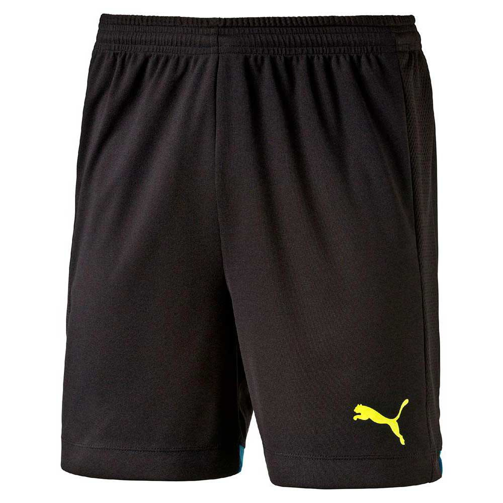 Puma IT evoTRG Short