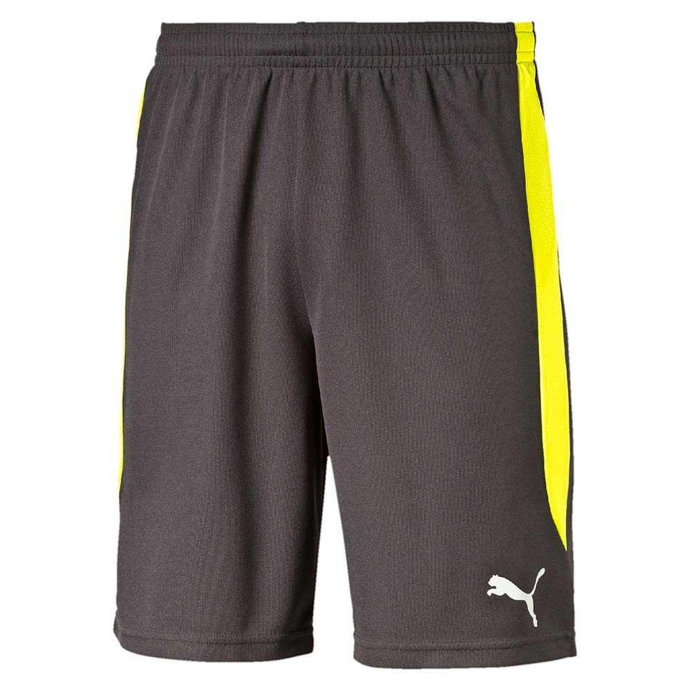 ea23c6a94a Puma ftblTRG Shorts buy and offers on Goalinn