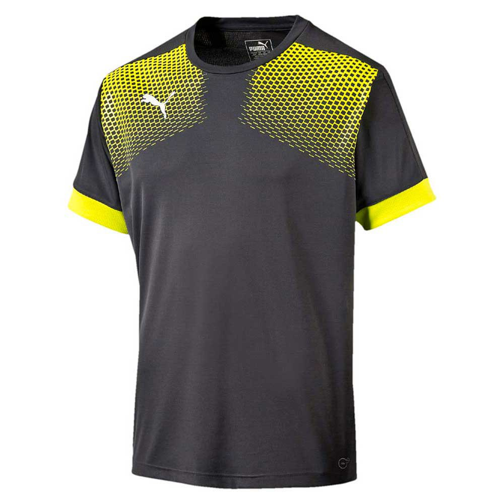 Puma IT evoTRG Graphic Tee Touch