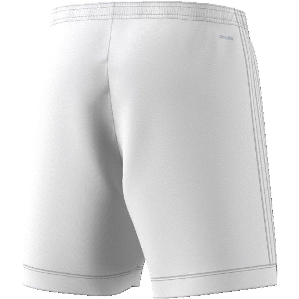 Squadra 17 Short Pants