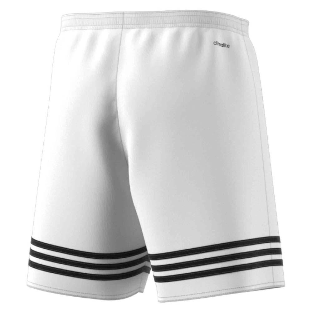 adidas shorts entrada 14
