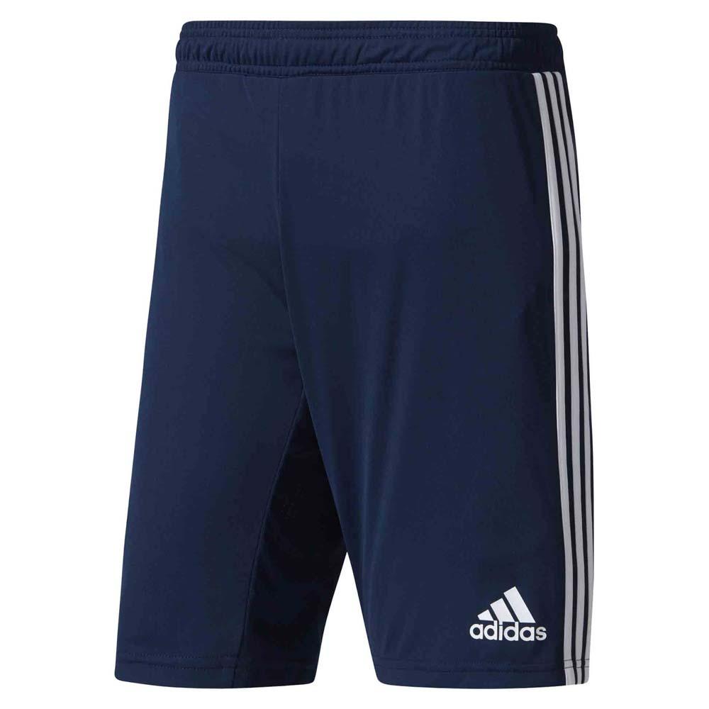 Clubs Adidas Fc Bayern Munich Training Shorts Wb
