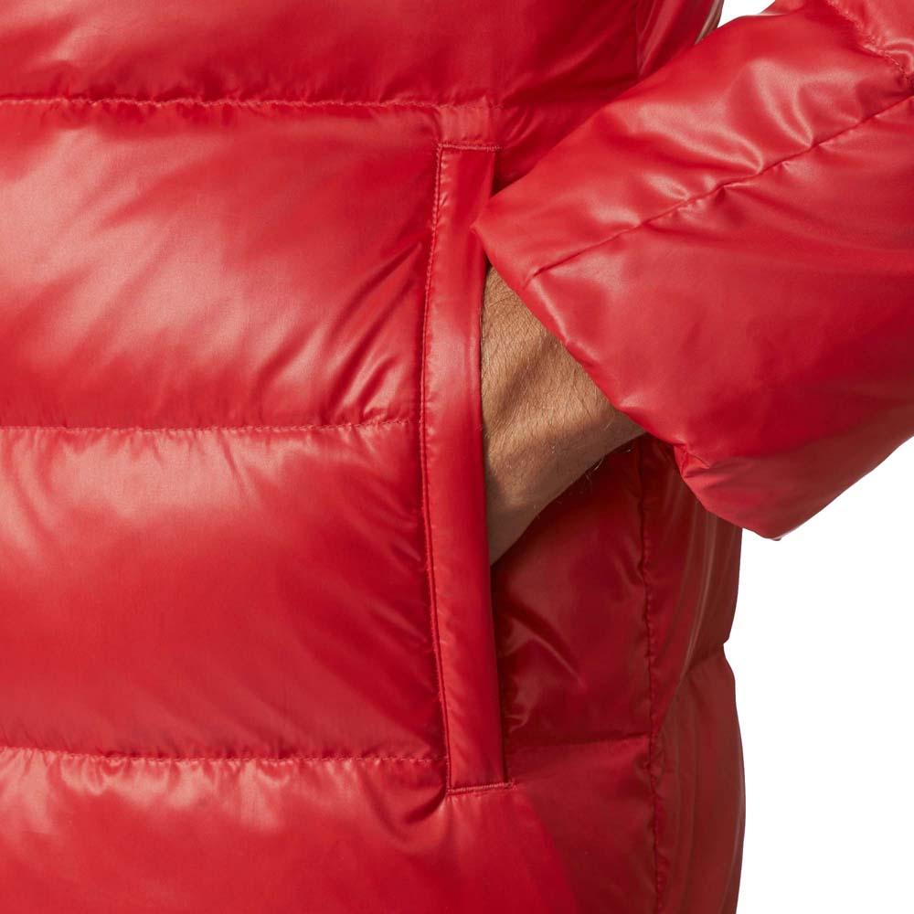 adidas FC Bayern Munich Winter Jacket køb og tilbud, Goalinn