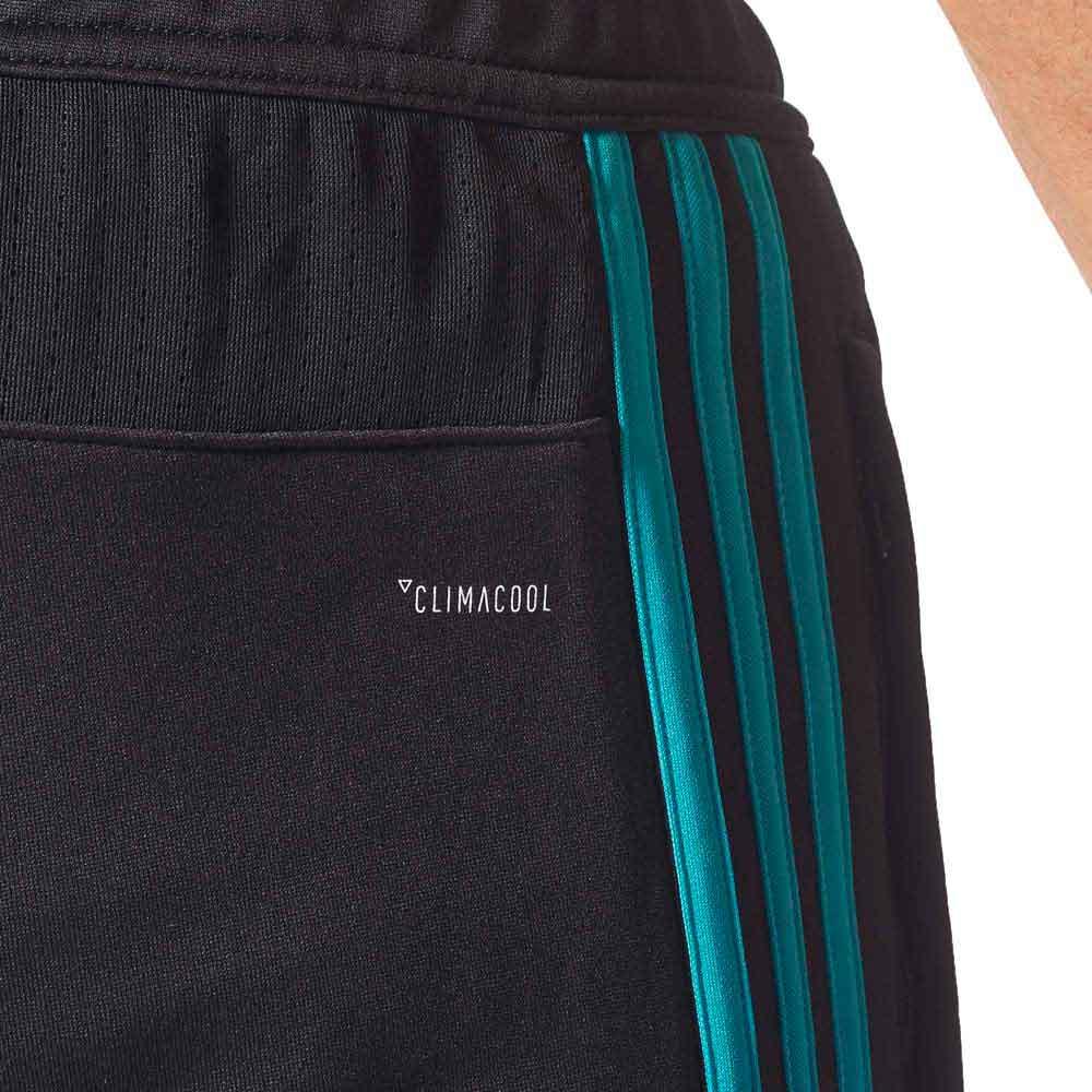 Tormenta segunda mano Momento  adidas Real Madrid Training Pants Black buy and offers on Goalinn