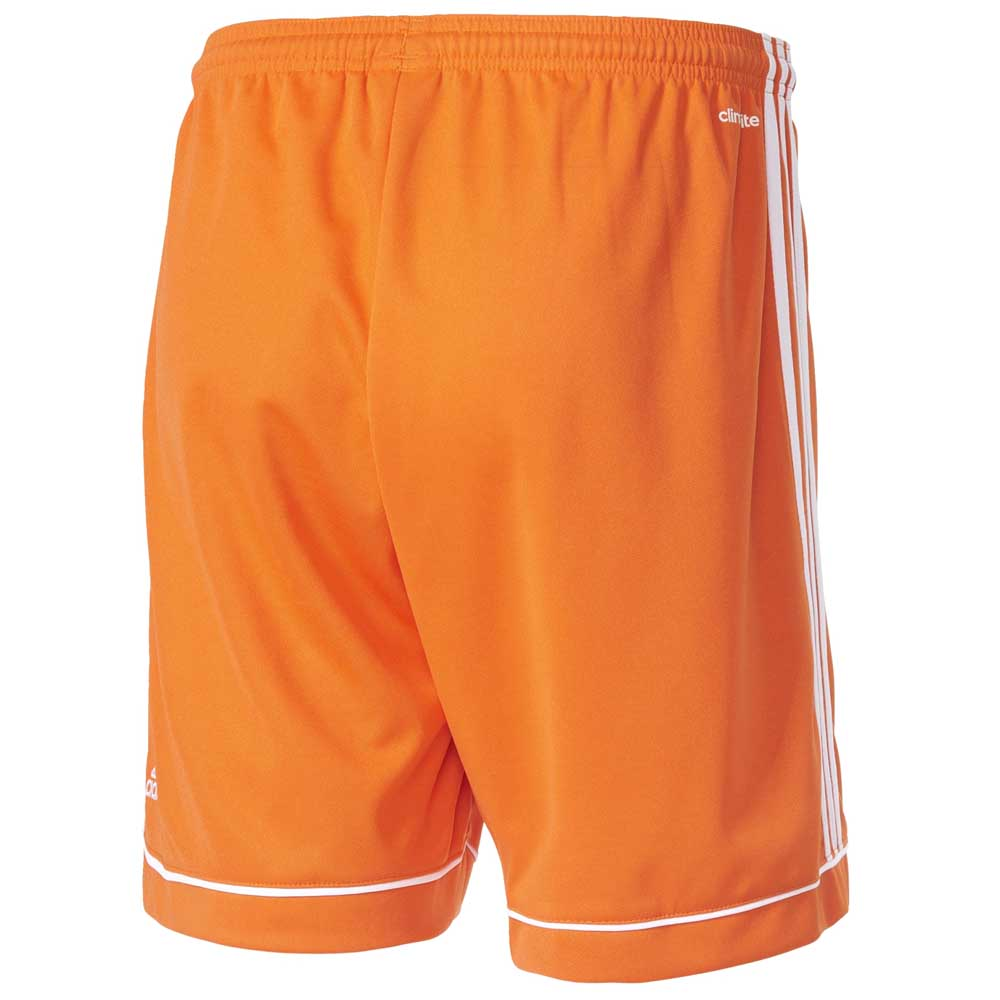 4f27a4484804b adidas Squadra 17 Short Pants Junior buy and offers on Goalinn