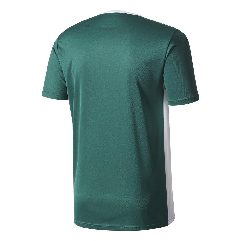 adidas Entrada 18 S S Verde comprare e offerta su Goalinn ee3efa40aa63