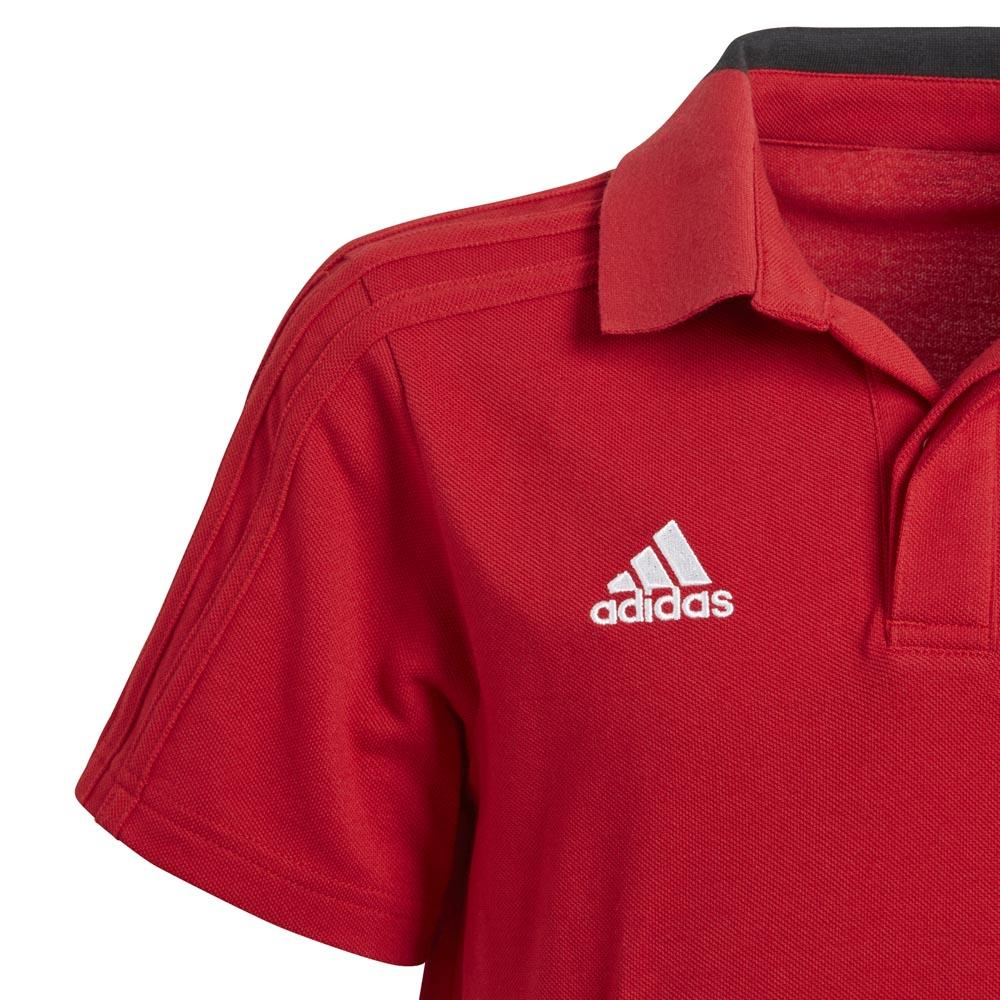 adidas Condivo 18 Cotton SS Red buy and offers on Goalinn