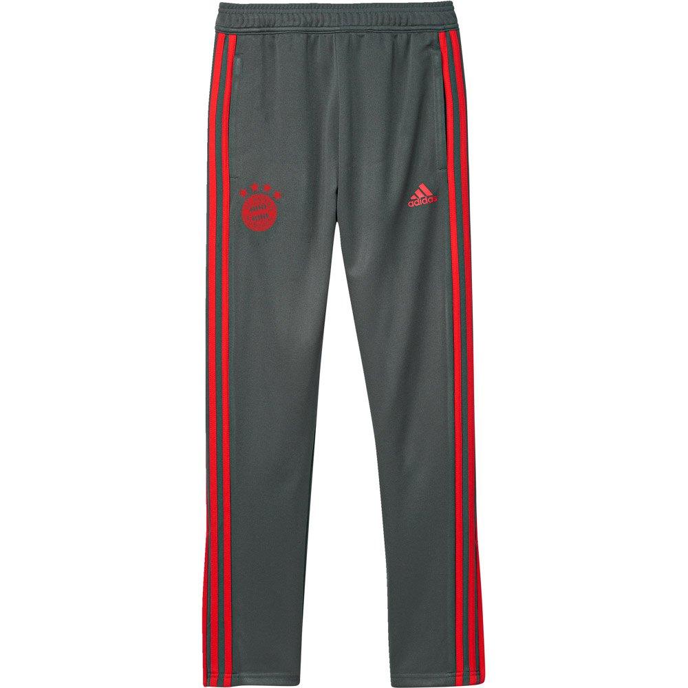 adidas FC Bayern Munich Training Pants Junior Grey, Goalinn