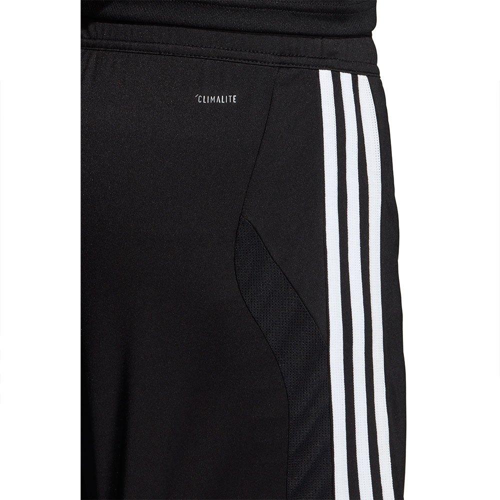 adidas Tiro 19 2 In 1 Shorts Regular