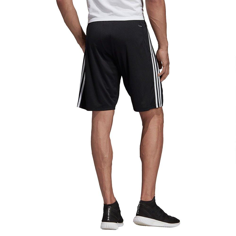 Tiro 19 Training Shorts Regular