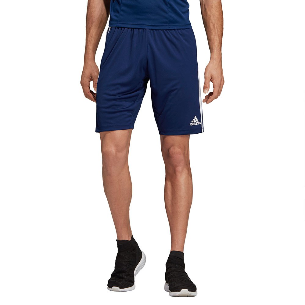 adidas Tiro 19 Training Shorts Regular