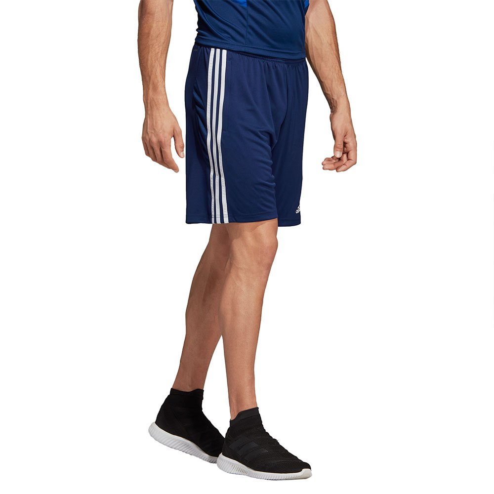 Scarpe Adidas Superstar Scarpe Nencini Sport dBoxreWC