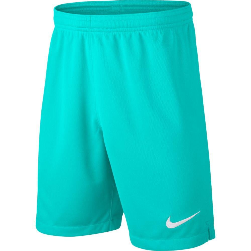 Nike Tottenham Hotspur Fc Goalkeeper Breathe Stadium 19 20 Green Goalinn