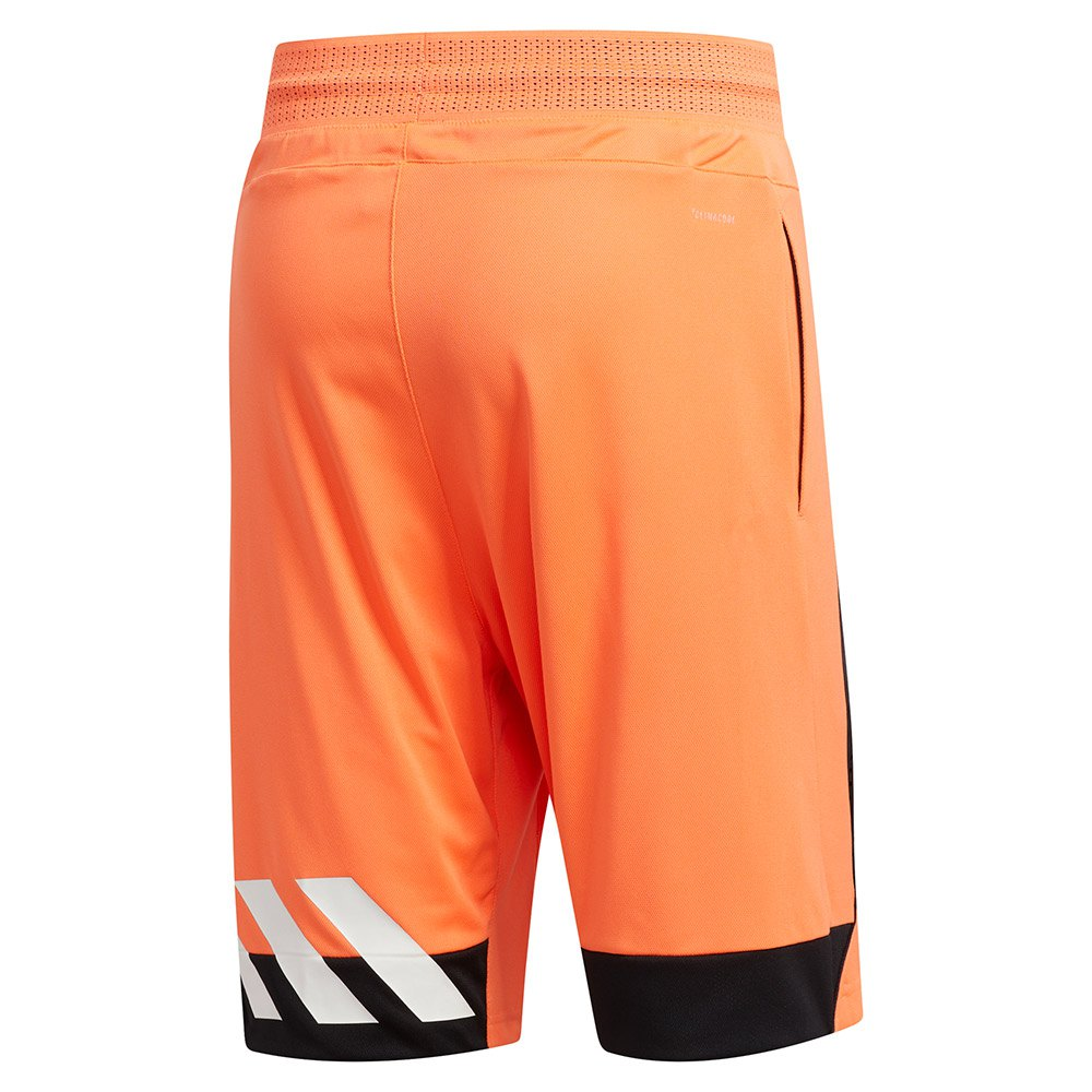 creator-365-shorts-regular, 27.95 EUR @ goalinn-deutschland