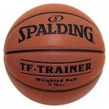 Spalding NBA Trainer Heavy