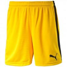Puma Pitch Pantalones Cortos Without Innerbrief