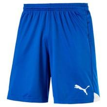 Puma Ftbltrg Short Pants