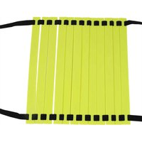 softee-agility-ladder-6-m