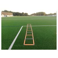 softee-agility-ladder-5-m