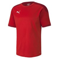 Puma Teamfinal 21 Training